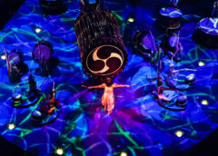 Top 4 Cirque du Soleil Shows in Vegas