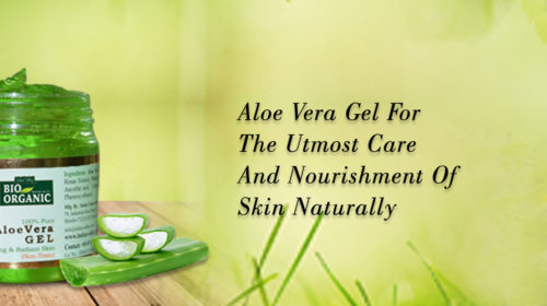 The top 5 benefits of Aloe Vera