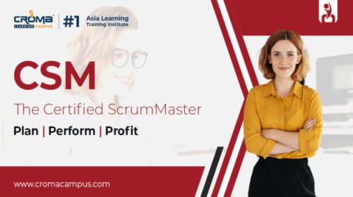 Certified Scrum Master Course